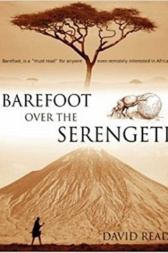 Barefoot in the Office (African Trilogy)